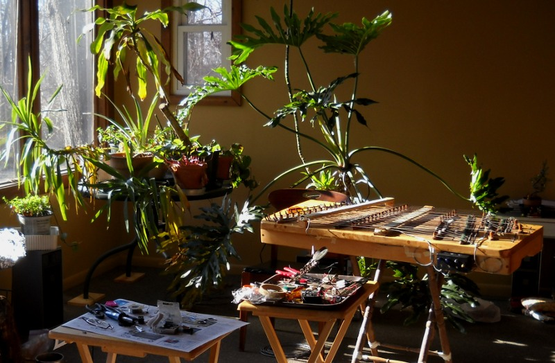 dulcimer with new pickups and tray tables with tools surrounded by green houseplants in a sunny room