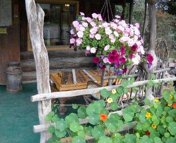 dulcimer on front porch
