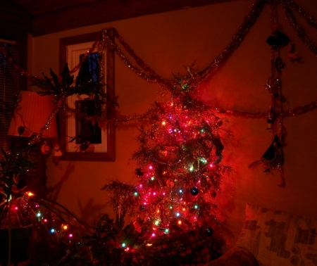 xmass tree