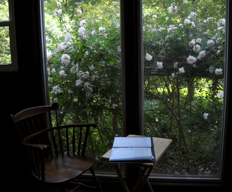 my chair and my open journal on a tray table before it, in front of picture windows full of blooming pink rambler roses outside them