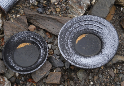 gold pans with gold and a dusting of snow