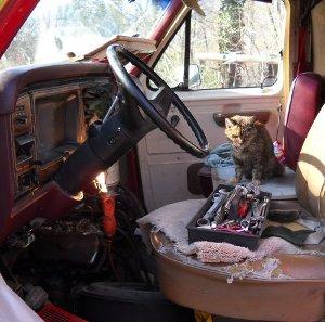 sienna watching van repairs