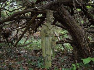 stone-cedar-woman