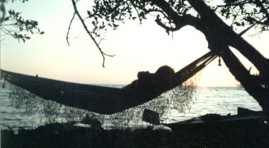 camping in a hammock in the mangroves, my sailing kayak on the beach behind me