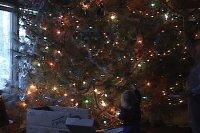 xmass tree 2000