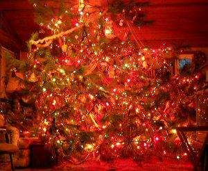 xmass tree 2009
